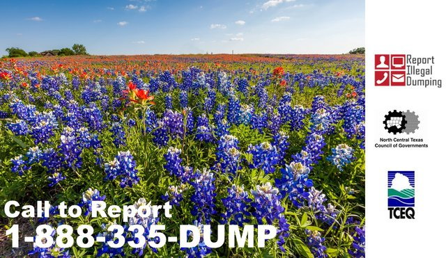 report illegal dumping 2.png